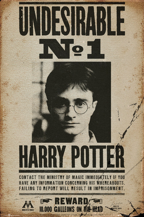 Póster Harry Potter Undesirable No 1