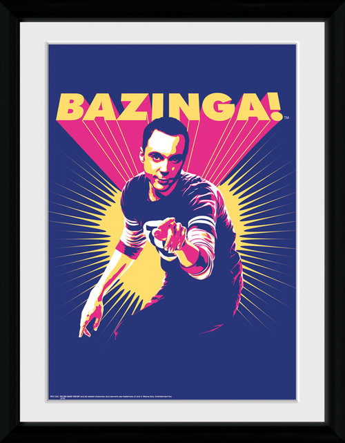 Póster The Big Bang Theory 116014