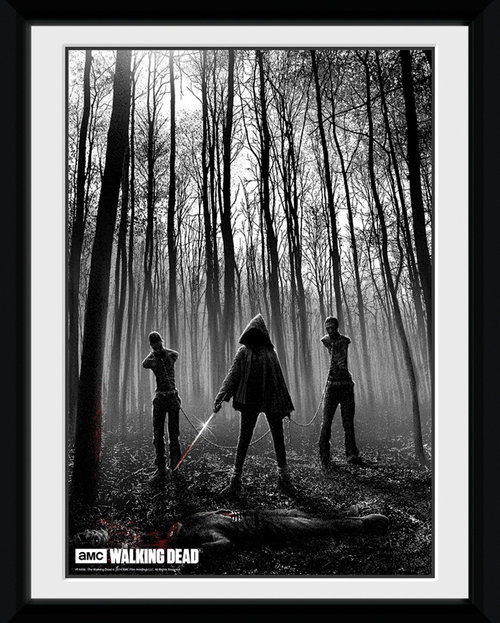 Póster Walking Dead 116107