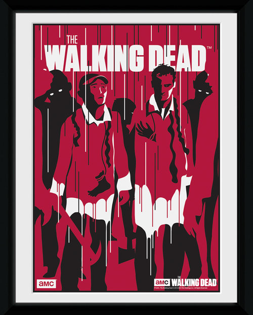 Póster Walking Dead 116110