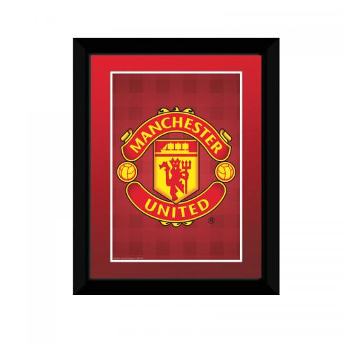 Copia Manchester United FC 123428