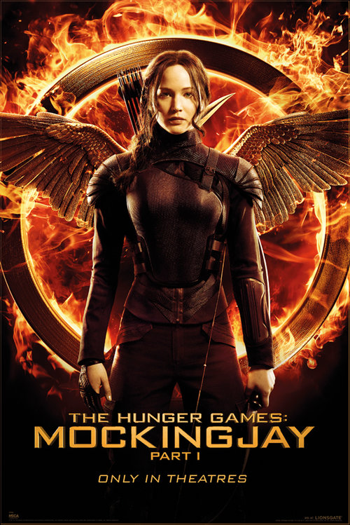 Póster Hunger Games 127460