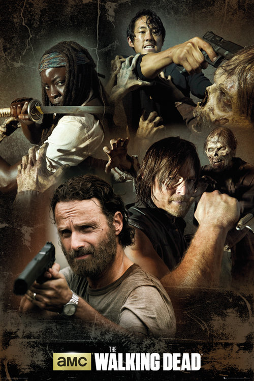Póster The Walking Dead 137087