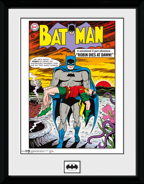 Póster Batman Robin Dies at Dawn