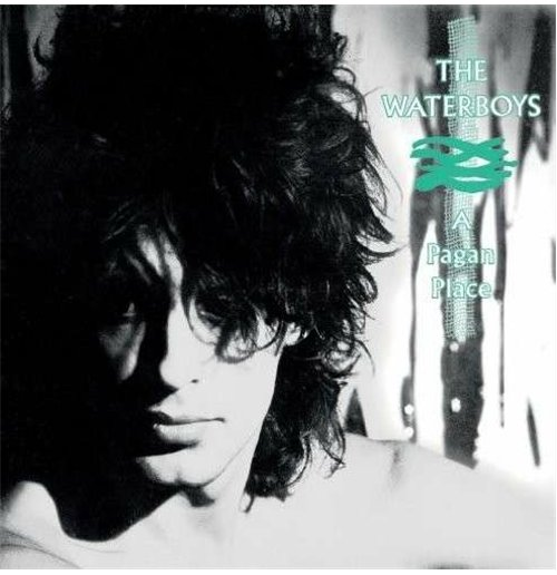 Vinilo Waterboys (The) - Pagan Place