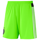 Pantalón corto Ajax 2015-2016 Away