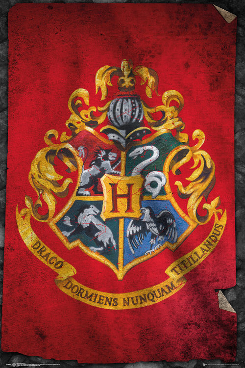 Póster Harry Potter Hogwarts Flag