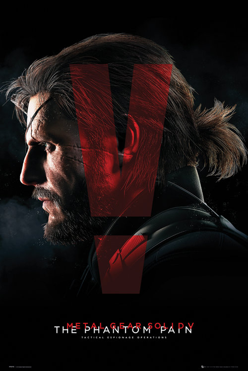 Póster Metal Gear 149495