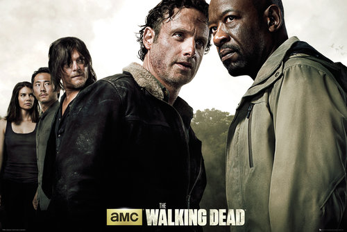 Póster The Walking Dead 150672