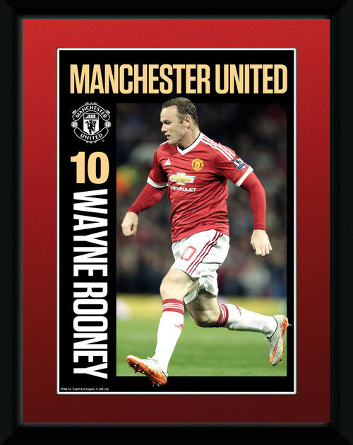 Copia Manchester United FC 151778