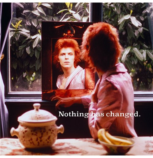 Vinilo David Bowie - Nothing Has Changed (2 Lp)