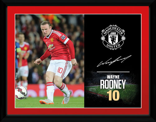 Copia Manchester United FC 175906