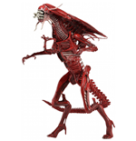 Aliens Figura Ultra Deluxe Genocide Red Queen 38 cm