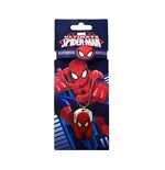 Pulsera + Collar Spiderman