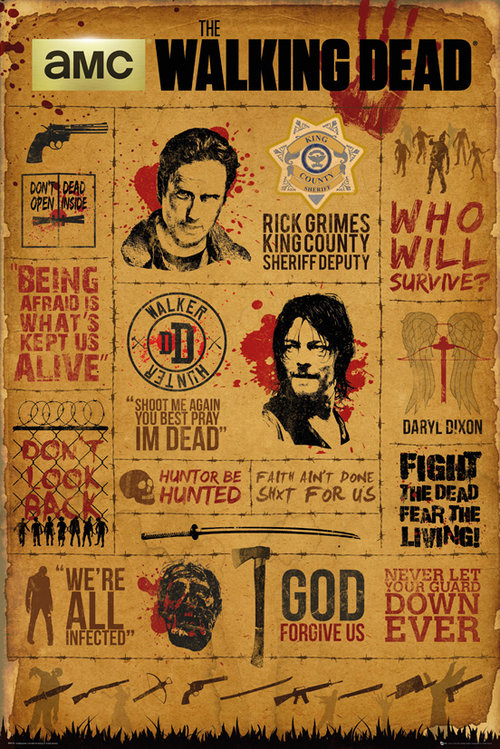 Póster The Walking Dead 208262