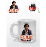 Taza Big Bang Theory 214593