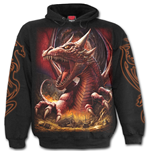 Sudadera Spiral Awake The Dragon