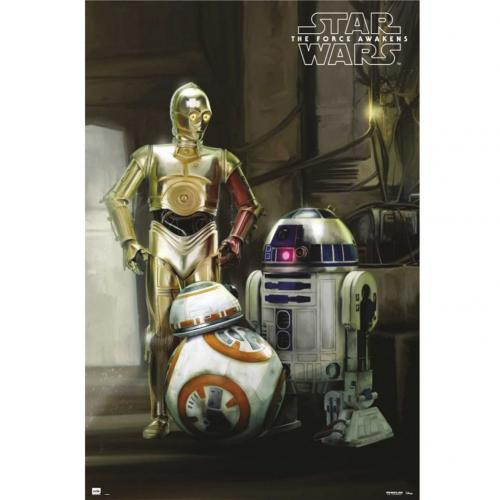 Póster Star Wars 223307