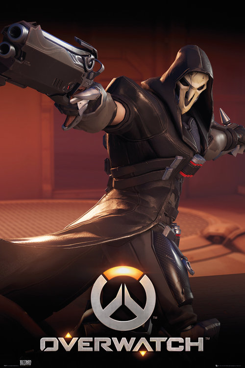 Póster Overwatch 223518