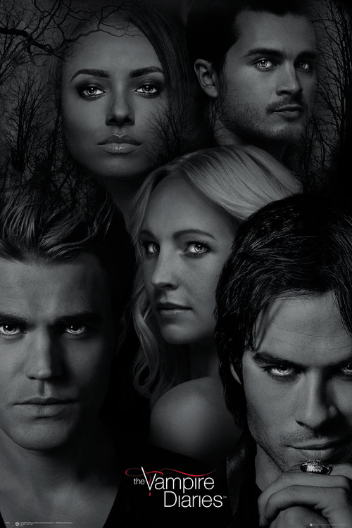 Póster The Vampire Diaries 223564