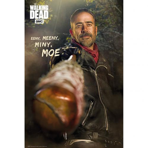 Póster The Walking Dead 225255