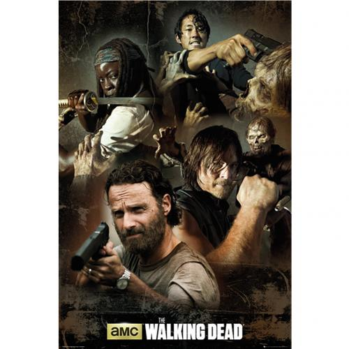 Póster The Walking Dead 225257
