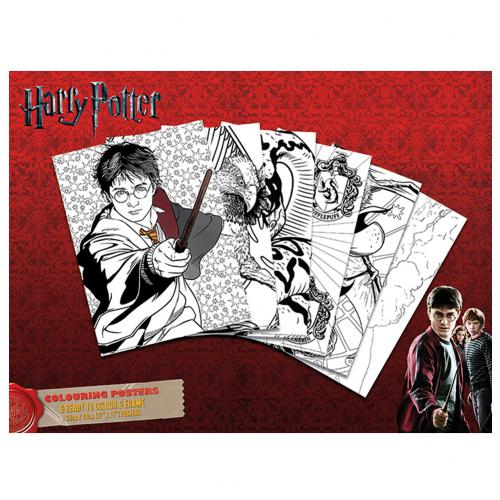 Póster Harry Potter 237921