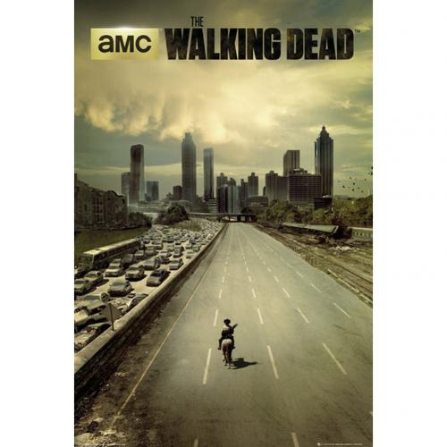 Póster The Walking Dead 240490