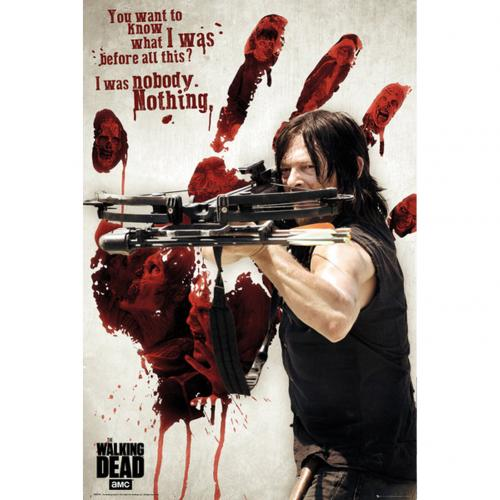 Póster The Walking Dead Daryl 253