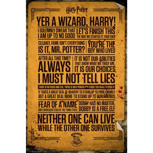 Póster Harry Potter Quotes 263