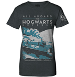 Camiseta Harry Potter 245220