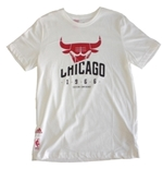 Camiseta Chicago Bulls 247618