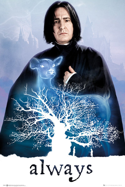 Póster Harry Potter 248371
