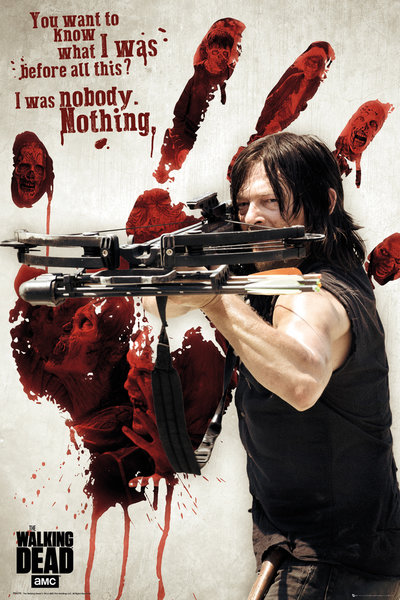 Póster The Walking Dead 248585