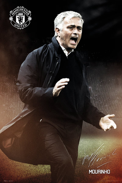 Póster Manchester United FC 249163