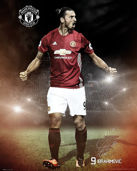 Póster Manchester United FC 249169