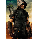 Póster Arrow 253156