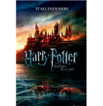Póster Harry Potter 253361