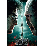 Póster Harry Potter 253362