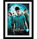 Copia Harry Potter 253364