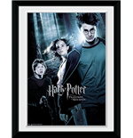 Copia Harry Potter 253366