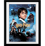 Copia Harry Potter 253367