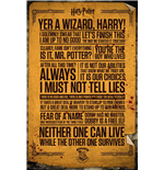Póster Harry Potter - Quotes - 61x91,5 Cm