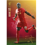 Póster Liverpool FC 253455