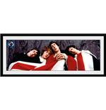 Copia The Who 254377