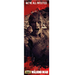 Póster The Walking Dead 254928