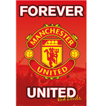 Póster Manchester United FC 255289