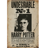 Póster Harry Potter 255305