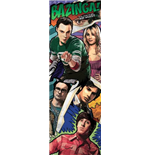 Póster Big Bang Theory 255319