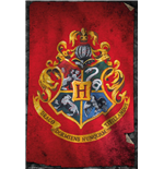 Póster Harry Potter 258183